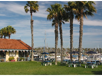 The sunny tables, large lawn, and harbor views at Harbor Cove Cafe.