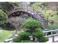 Bridge in the Japanese Garden.
