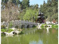 Bridge and pavilion at the Chinese Garden- you feel you've been transported to China, minus the long flight!