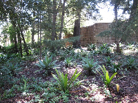Lush vegetation surrounds the school grounds.