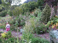 Little girl in the herb garden.