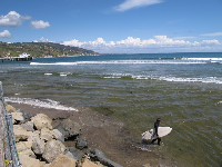 Malibu pier and a surfer, seen from Adamson House gardens.