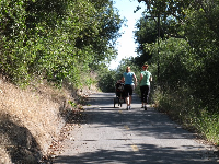 The Maria Ignacio Route Bike Path leads from neighborhoods north of the freeway to the Coast Route Bike Path.