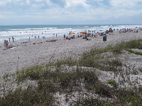 Dunes at Cocoa Beach.
