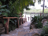 Steps down to the docks at Guanabanas.