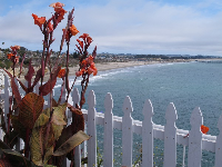 Flowers and white picket fence with view of Pismo Beach.