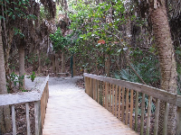Walkway to the beach.