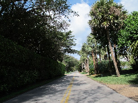 Gomez Rd, which runs parallel to Beach Rd and is lined with mansions.