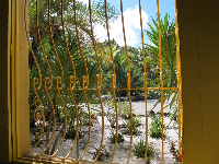 Yellow window and desert plants outside.
