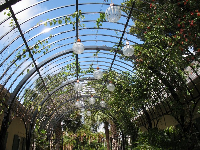 Glass spheres created by Frabel, suspended from the ceiling of the McKee pergola.