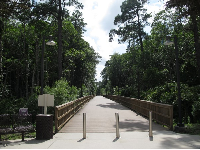 Walkway through jungle to Osprey Fountains dorms.