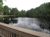 Lake on campus.