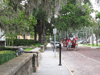 Carriage ride for tourists.