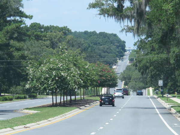 The hilly roads of Tallahassee.