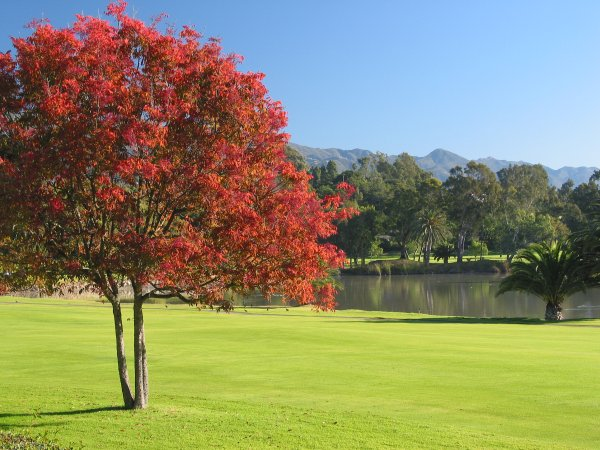 Who says we don't have seasons in California? 