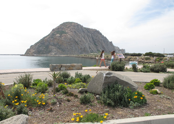 Harborwalk (sea otters!), Morro Bay, San Luis Obispo California