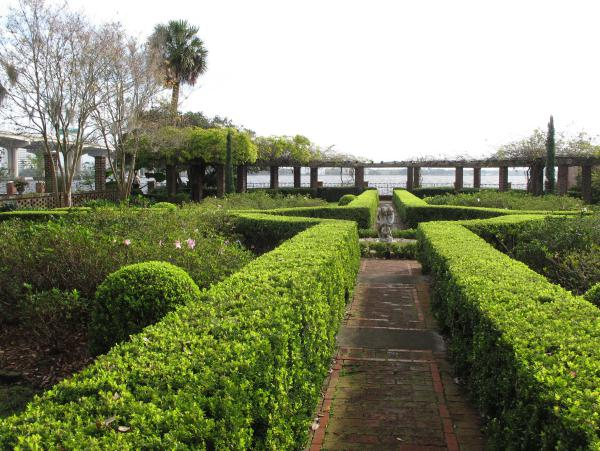 Hedges leading to the water.