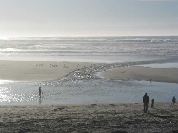 San Gregorio Beach, San Francisco California