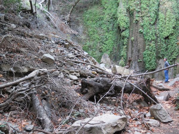 The rock slide area- the path and a bench were covered.