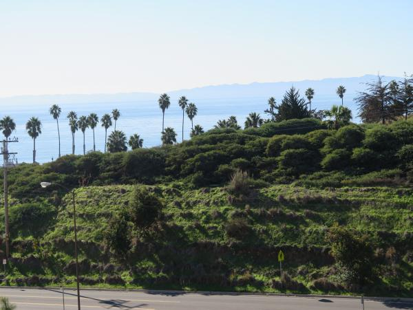 Cute landscaped cliff on Loma Alta Drive.