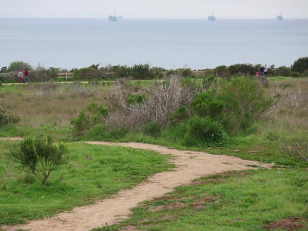 The trail, and three oil platforms.