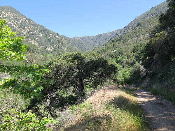 Romero Canyon Drive and Trail, Summerland, Santa Barbara California