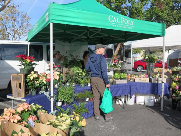 Cal Poly stand at the Saturday morning farmer's market outside Bed Bath and Beyond.