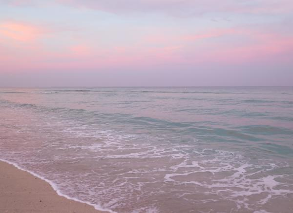 Pink clouds at the beach at sunset.