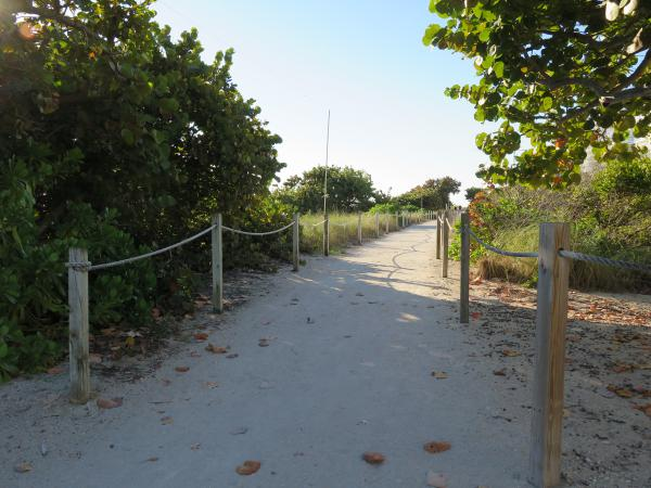 The Surfside Walking Path.