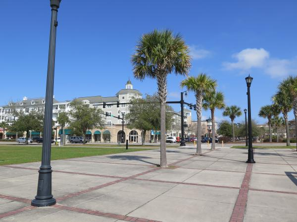Palm trees and blue sky, in the plaza leading to Market Common.