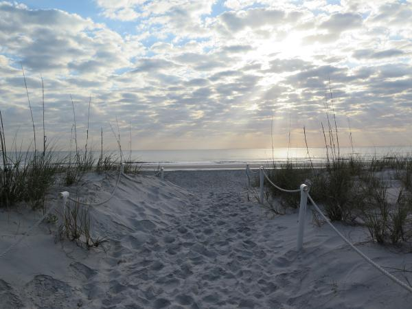 Walking toward a gorgeous morning at the beach.