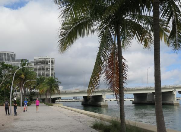 Looking toward the causeway, from the walkway at Maurice Ferre Park.