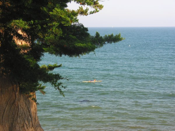 Watch kayakers and sailboats drift by as you sit in the shade of a cypress tree.