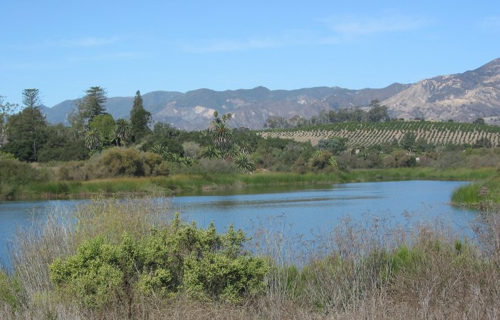 Lake Los Carneros, Santa Barbara California