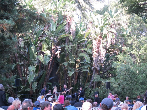Donna Greene and the Roadhouse Daddies play amongst the wonderful banana trees.