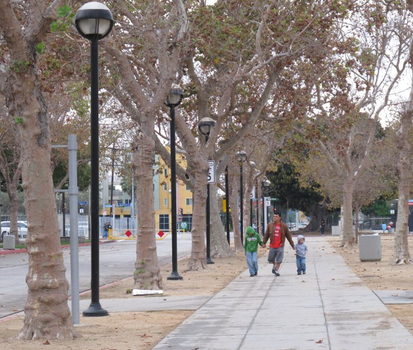 Row of wintry trees leading past the Natural History Museum to the California Science Center.