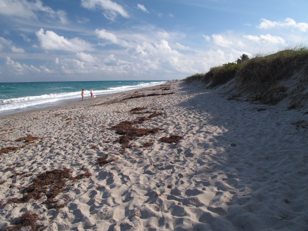 Carlin Beach and Playground, Jupiter, Palm Beach FL