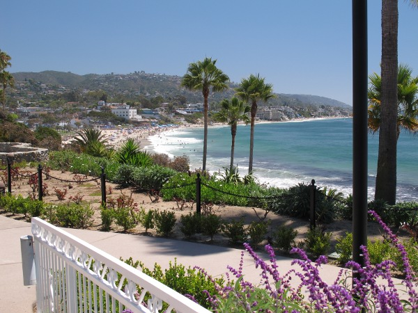 Flowers galore, and the perfect curve of Laguna Beach, as you leave the restaurant.