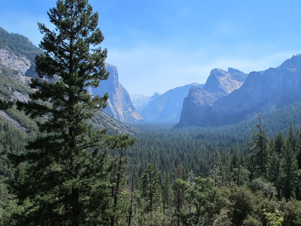 Yosemite Valley (4hrs from SF), San Francisco California