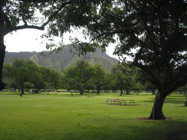 There is a ton of open space at Kapiolani Park!