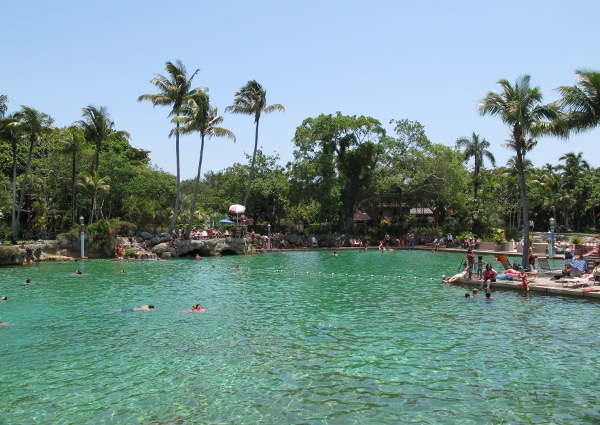 Busy weekend in May at the Venetian Pool.